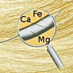 analiza pierwiastkowa włosów rzeszów
